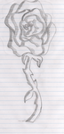 Awesome Rose sketch by angelfish666