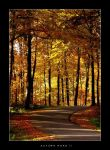 Autumn Road II by dcphotography