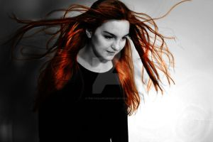 Photography: Black and White with Colour by The-Cyclops
