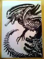 Alien sketch by francesco-biagini