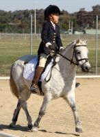 Pony Dressage - Stock - 05 by aussiegal7