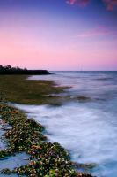 Delegan Beach by iwaniga