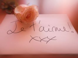 Je t'aime! by Sisterslaughter165