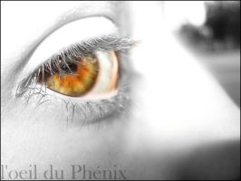 L oeil du Phenix by pablenn