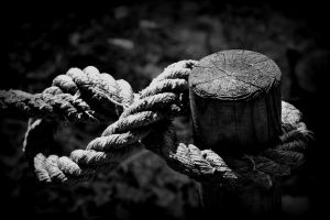 8-Knot by etr-wroclove