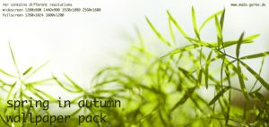 spring in autumn wp pack by Ythor