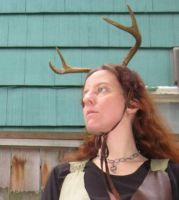 Antler headdress 2 by lupagreenwolf