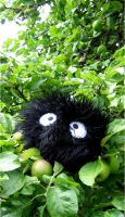 At home in my Apple Tree by kickass-peanut