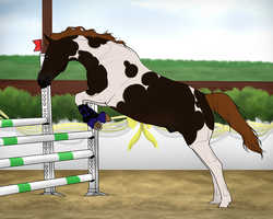 Chamier-warmblood import #74 (raffle) by EddieLover
