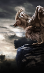 COM: stormy skies ahead by ARGENTICIDE