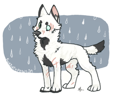 Smells of Rain and wet dog by FourDirtyPaws