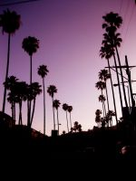 Los Angeles Sunset by MadameMimi