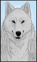 White Wolf by Ashy666