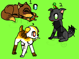 Puppies Adoptables by WarriorAdopts