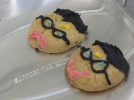 Harry Potter Cookies by Sylviasama