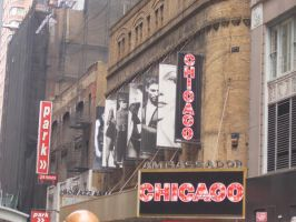Chicago by Mello-in-my-closet