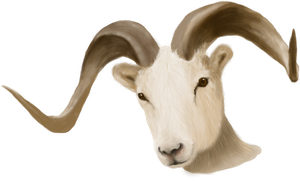 Painted Ram Head - unrestricted stock by KingaBritschgi