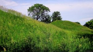 Indian Mound 2 by mrmd53