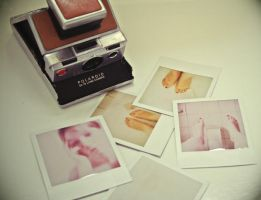 polaroid shower by pellegrina