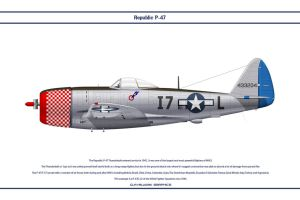 P-47 USAAF 493rd FS 1 by WS-Clave