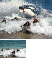 orca attack by TheOutcast1821