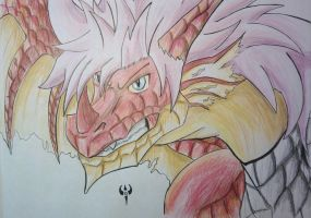 Natsu Dragneel - The Fire Dragon by Arenthor