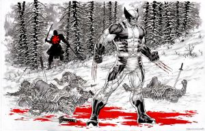 Wolverine: Snow and Blood by IbraimRoberson
