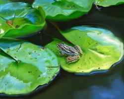 Frog on a pad by Jenniferard2050
