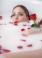 Rose petals by Stridsberg
