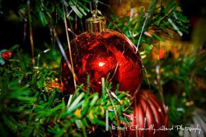 Tis The Season by Michelliechelle
