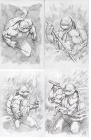 Tmnt Turtle power! by BienFlores