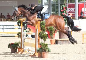 OESTM Jumping_75 by CalyHoney