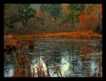 Painted Pond by zedkhov