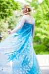Frozen: Elsa 4 by Stealthos-Aurion