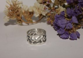 Silver ring by SergeyGula