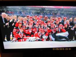 Team canada win gold 2015 pic 1 by catsvsfox