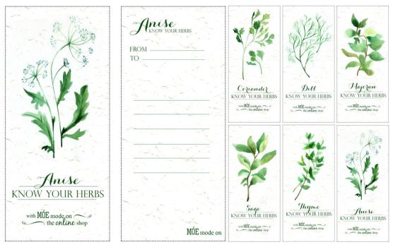 Know your herbs by AndrewPastel