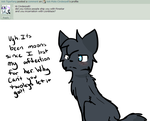 Ask 1 by Ask-Male-Cinderpelt