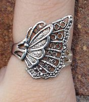 Butterfly Ring Stock by Waratahra-Stock