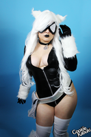 Spiderman: Black Cat III by CookieKabuki