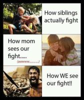 how fights are seen. :D by salvi41