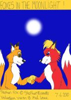 foxes in the moonlight by cartoonprincessML