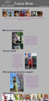 Cosplay Meme: 2013 in Review by Ever-smiling
