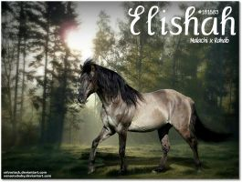 Elishah by JuneButterfly-stock