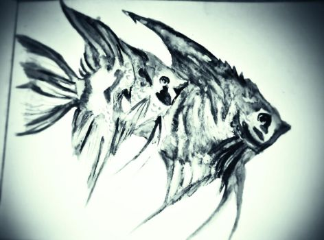 Angel fish watercolor in black and white ! by lallibear