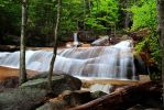 Stock: Waterfalls in the Forest by Celem