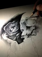 roses and skull by AndreySkull