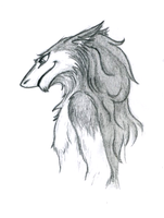 Sergal sketch by Ankhes-Nur