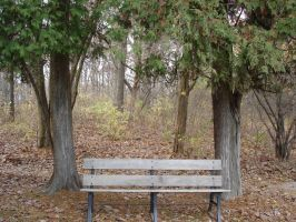 Bench1 by RagedAngelStock