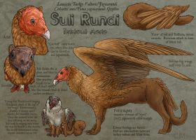 Suli Rundi Reference Sheet by Ciameth